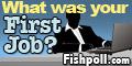 Fishpoll - First Job