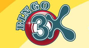 Bingo 3x Review