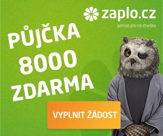 Online nebankovní rychlé pujcky ihned liberec u psa