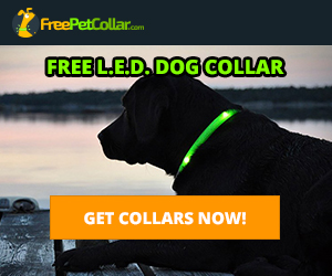 Pets & Animals at Totally Free Stuff