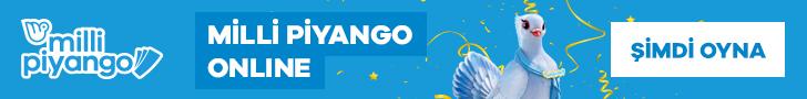 Milli Piyango Online Siberdefter